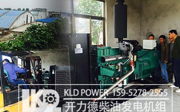 养殖场用柴油发电机组